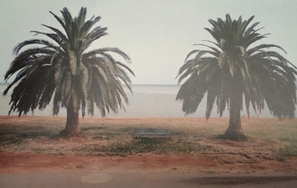 58ème billet | Exposition du photographe italien «Luigi GHIRRI – Cartes et Territoires» au Jeu de Paume 2 1 1024x648